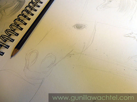 Pages from the Sketchbook - Gunilla Wachtel
