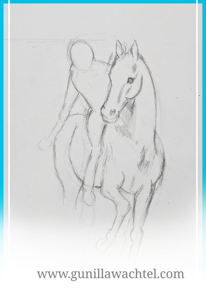 Horse pencil sketch by Gunilla Wachtel
