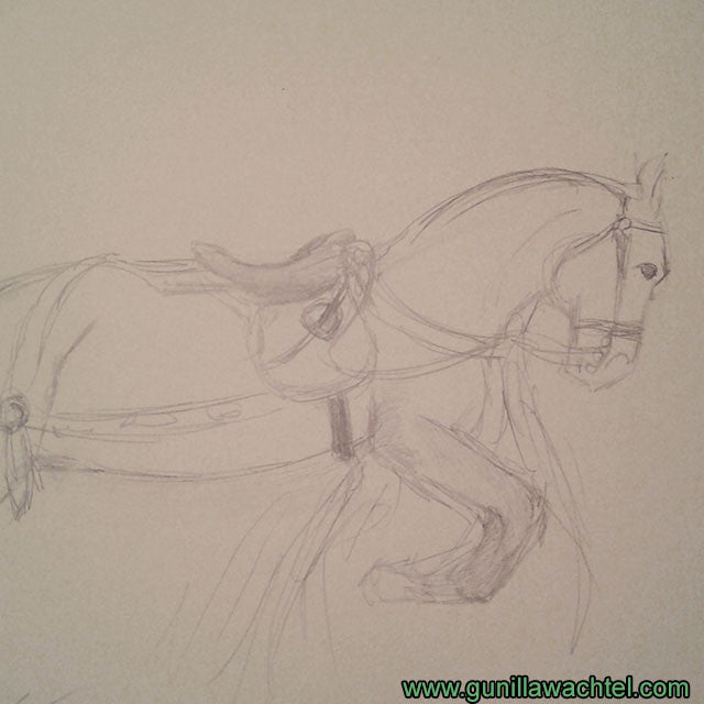 Horse Pencil Sketch Drawing Gunilla Wachtel