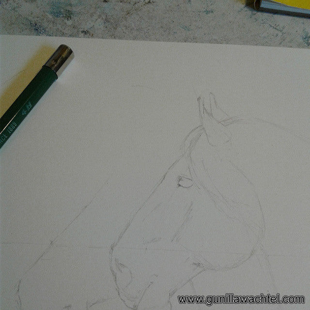 Two horses - artwork in progress Gunilla Wachtel