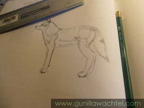 Wolf sketch - Kanweienea Kreations