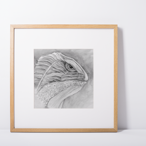 Art Poster Print Gunilla Wachtel Pencil Drawing Lizard