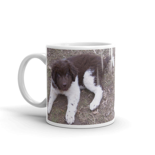 Newfoundland Dog Landseer Brown White Puppy Mug