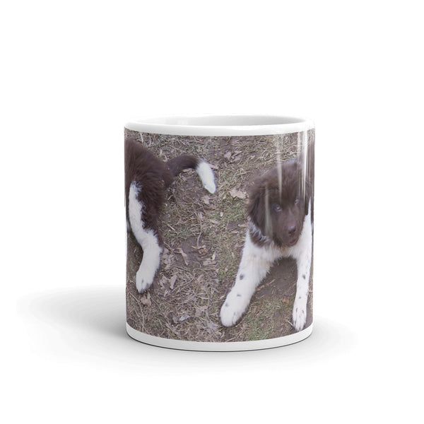 Newfoundland Dog Landseer Brown White Puppy Mug cute