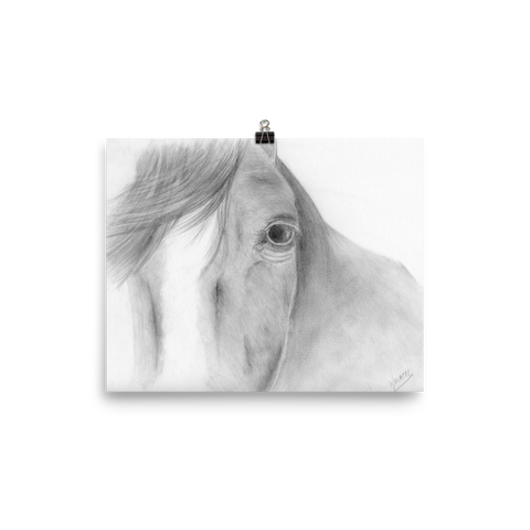 Equine Horse Head Fine Art Poster Animal Drawing Equestrian Print Decor