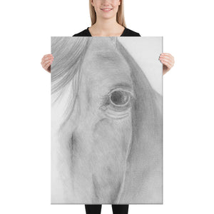 Equine Horse Animal Canvas Drawing Wall Art Horse Equestrian Art Print Decor large huge