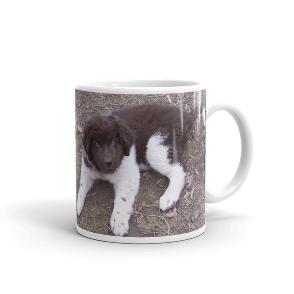 Newfoundland Dog Landseer Brown White Puppy Mug pup
