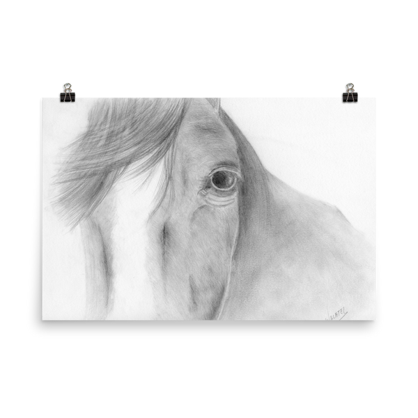 affordable gifts Equine Horse Head Fine Art Poster Animal Drawing Equestrian Print Decor