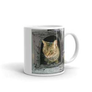 gift for cats lovers Tiggy The Tabby Cat Studio Helper Mug