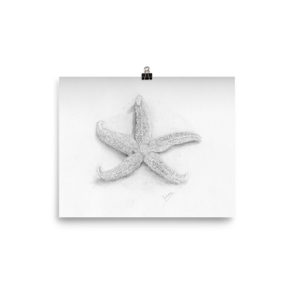 starfish Beach Home Contemporary Minimalist Decor Coastal Pencil Drawing Wall Art Print Poster