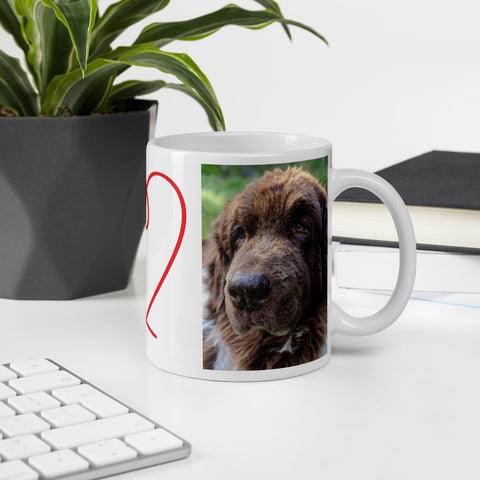 Cleo the Newfoundland Dog Landseer Mug