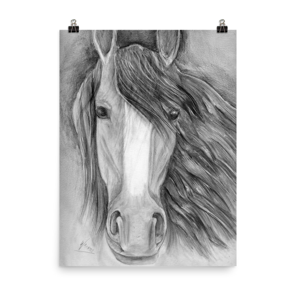 Equine Fine Art Poster Equestrian Wall Art Horse Drawing Wachtel home decor