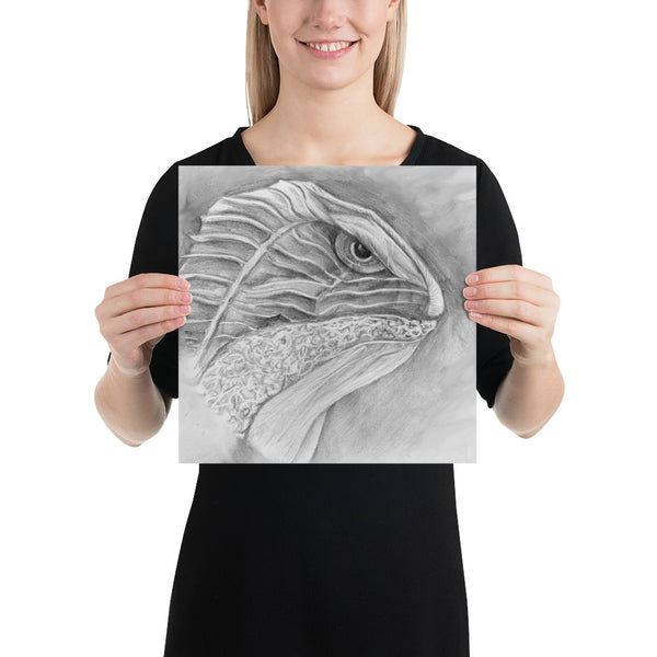 Lizard drawing print
