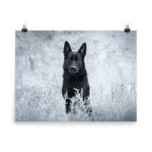 Load image into Gallery viewer, Brick Beauty in frost - Poster - VoodooFoxStore