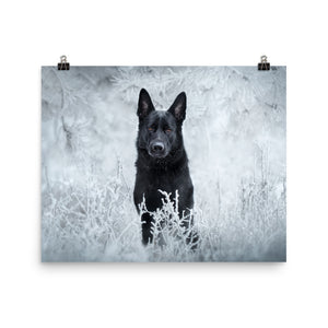 Brick Beauty in frost - Poster - VoodooFoxStore