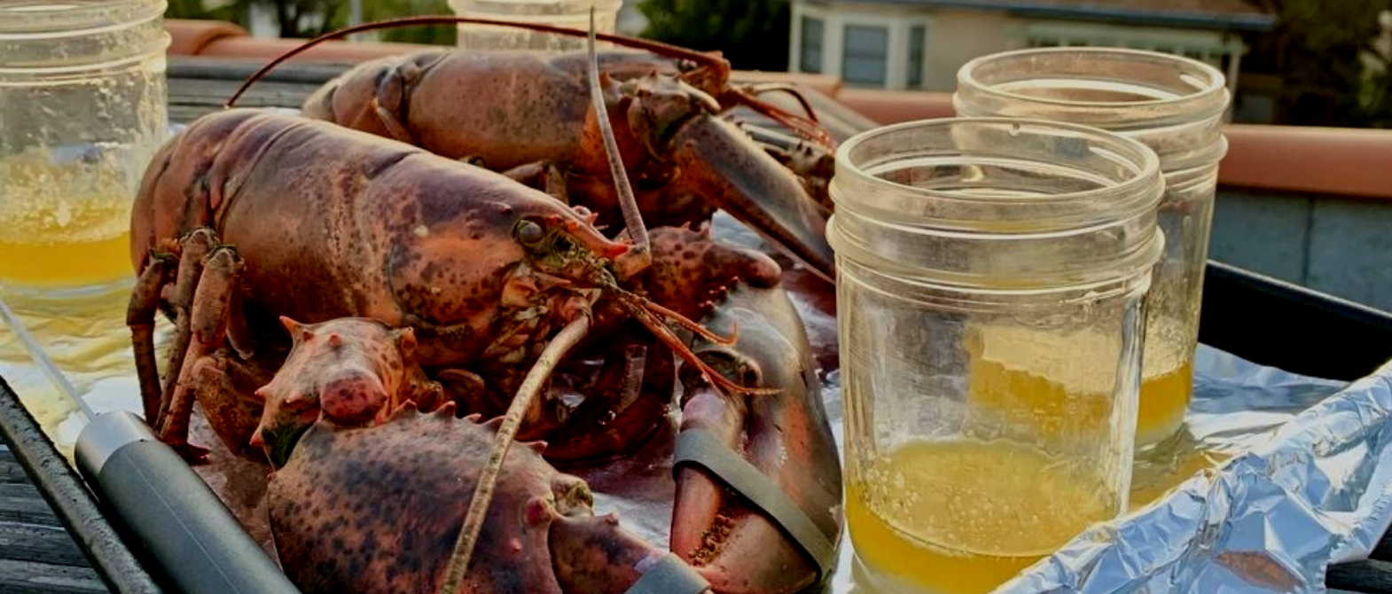 Wicked Maine Lobster