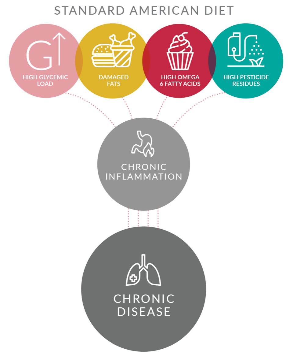 How foods affect inflammation infographic