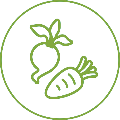 Fruit and vegetables icon