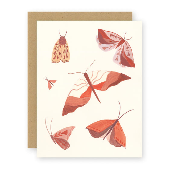Moths Notecard