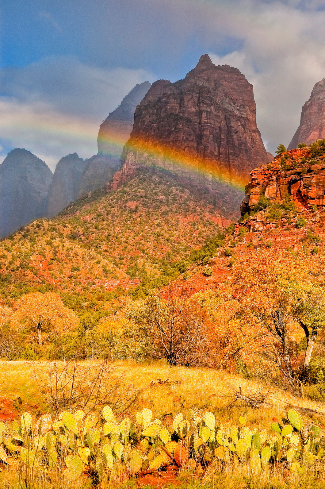 Rainbow Photography In Zion National Park Utah, Desert Art, South West Photography, Utah Photography, Desert Photography, Rainbow Art
