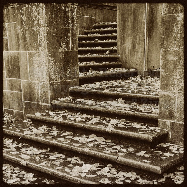 Black and White Architecture Photography, Stone Staircase At Winterthur Museum, Delaware Photography, Autumn Stairs Art, Fall Photography
