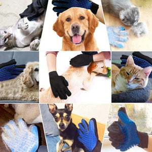 hands on pet grooming gloves for cats in blue color