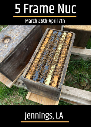 Jennings, LA (March 26th-April 7th) Southern 5 Frame Nucs