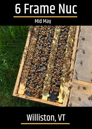 Williston, VT (Mid May)Northeast 6 Frame Nucs