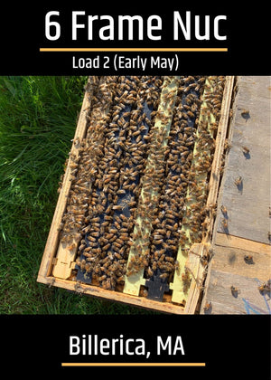 Billerica, MA Load 2 (Early May) Northeast 6 Frame Nucs
