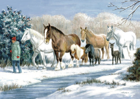 Horse Animal Charity Christmas Cards - Festive Holiday Greeting Cards