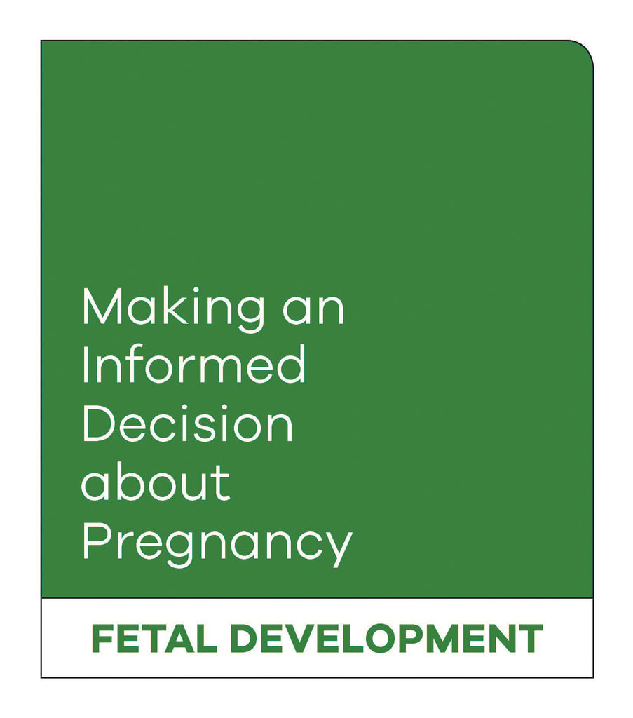 Making an Informed Decision about Pregnancy: Fetal Development (English, with Female Reproductive System)