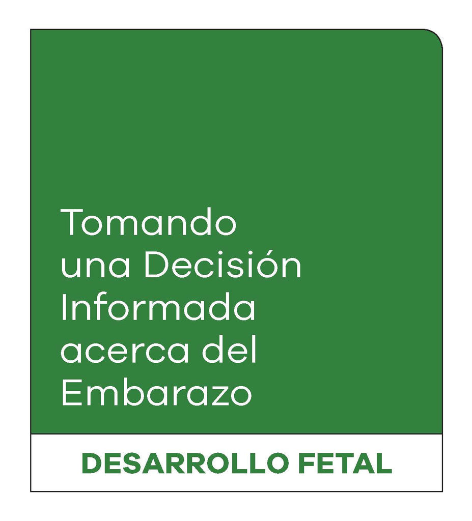 Making an Informed Decision about Pregnancy: Fetal Development (Spanish, without Female Reproductive System)