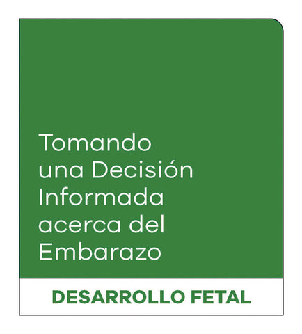 Making an Informed Decision about Pregnancy: Fetal Development (Spanish, with Female Reproductive System)