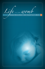 Life in the Womb - Brochure (English)
