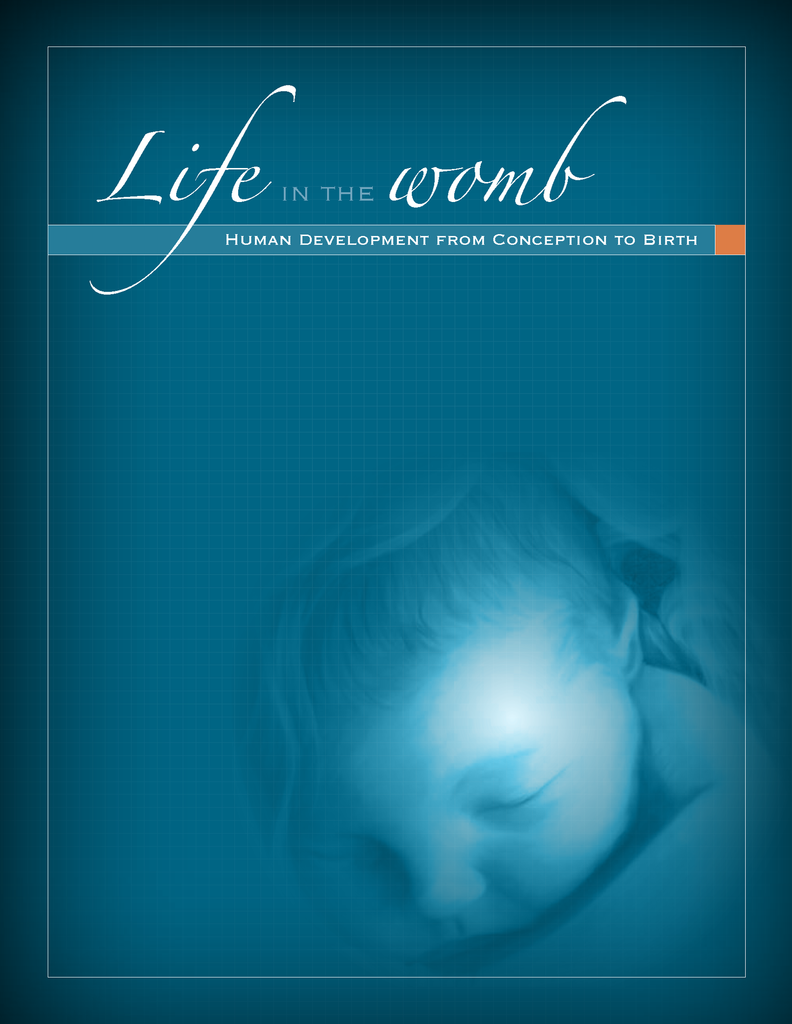 Life in the Womb - Flip Chart