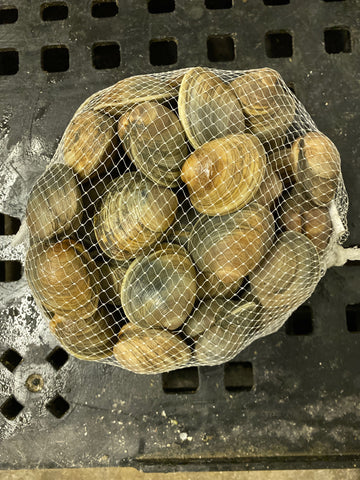 Clams (50 count)