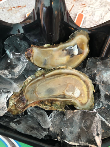 Oysters - Wild Caught (50 Count)