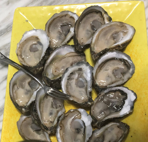 Oysters - Farm Raised (100 Count)