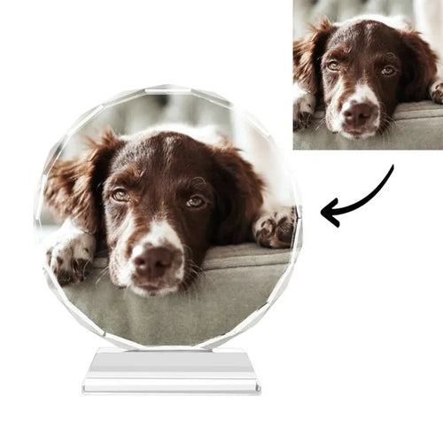 Custom Crystal Photo Frame Round 100mm Home Decoration Cute Pet