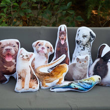 Custom Pet Photo Pillow Custom Pet Face Pillow,
