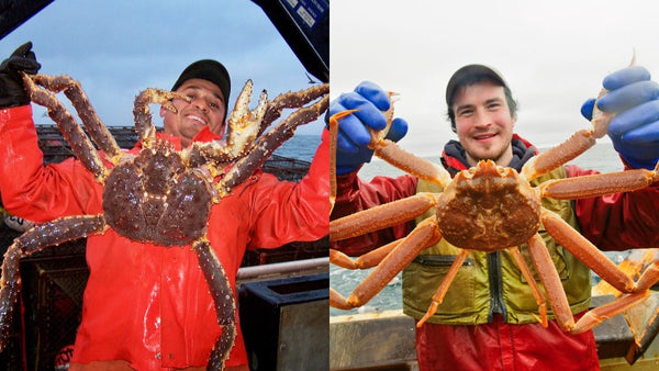 king crab and snow crab difference