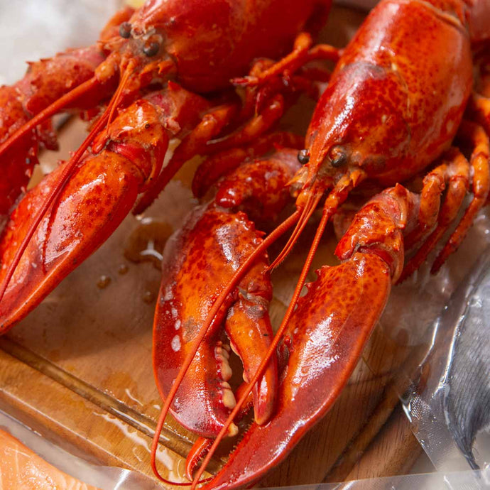 Boston Lobster Pack (400-500g) - Cooked