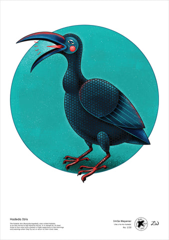 Hadeda Ibis - A3 digital file by Imile Wepener