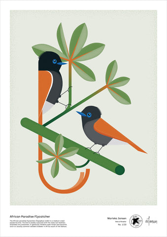 African Paradise Flycatcher - A3 digital file by Mariska Jansen