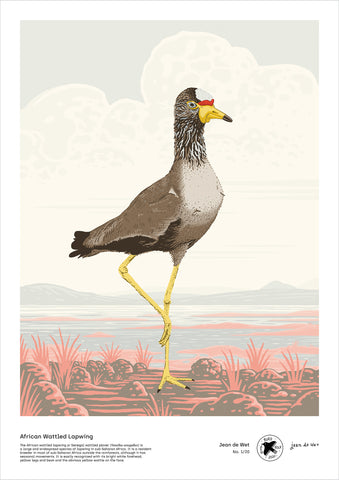 African Wattled Lapwing - A3 digital file by Jean de Wet