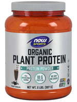 Now Sports Nutrition, Organic Plant Protein, Creamy Chocolate, 2 Lbs