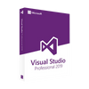 Visual Studio 2019 Professional