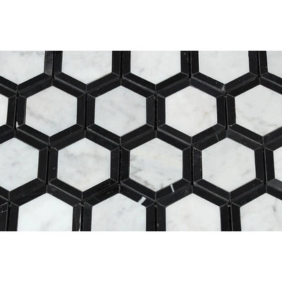 White Carrara Marble 2x2 Hexagon with Black Honed Mosaic Tile