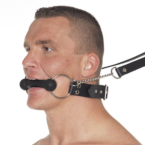 Leather Horse Bit Gag And Reins