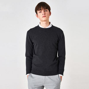 High Quality Men Autumn Winter O-Neck Business Cashmere Sweater Knitted Pullover Soft Long Sleeve Knitwear RE0898